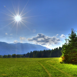 Bjelolasica by Marko Kosanović - Landscapes Mountains & Hills ( hills, mountains, sky, nature, hdr, green, bjelolasica, croatia, woods, sun,  )