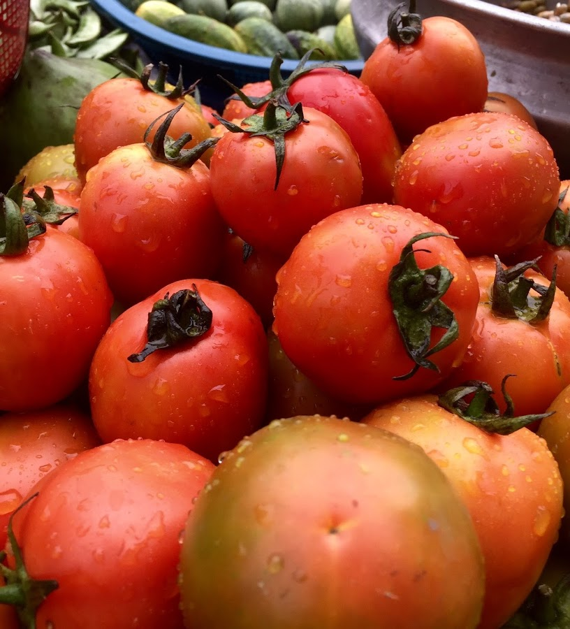 Tomatoes  by Shahed Arefeen - Food & Drink Fruits & Vegetables ( food and drink, tomato, fruits and vegetables, food photography, vegetable )