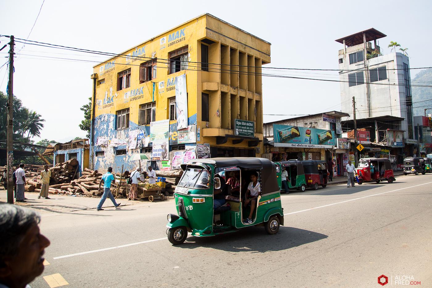 0061 - Sri Lanka - CP1A7145
