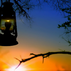Lamp by John Filmalter - Landscapes Sunsets & Sunrises ( lantern, camp, nature, sunsets, depth of field, africa, light )