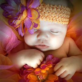 Sweet Dreams by Kandi's  Photography - Babies & Children Child Portraits ( babies, newborn kandis photography, sleeping, baby )