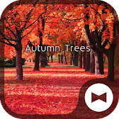 Autumn Trees Wallpaper Theme APK Icon