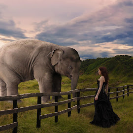 Eye to Eye by Art Poetra - Digital Art Animals ( *elephant*cliff*girl*sky*field )