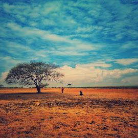Baluran National Park Savanah by Rodhifan Fdp - Instagram & Mobile Android ( savana, national park, indonesia, indonesia tourism, east java, landscape photography, tourism, landscapes, landscape, people )