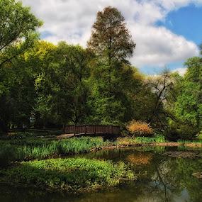 Botanical garden by Ljiljana Cviljak - City,  Street & Park  City Parks ( green, croatia, lake, zagreb, botanical garden, bridge, garden )
