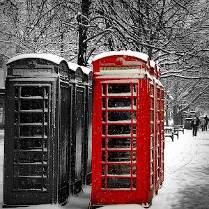 snowbw.jpg