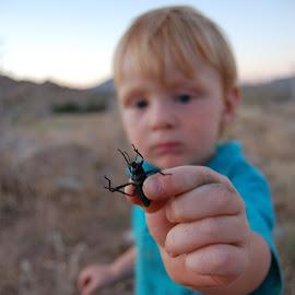 Look, Mama...Beetle! by Savannah Eubanks - Babies & Children Toddlers ( boy, beetle )