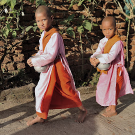 Young Girls Monks by Tomasz Budziak - Babies & Children Child Portraits ( children portrait, asia, children, burma )
