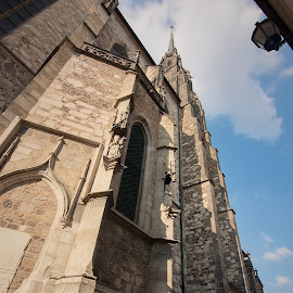 Tower of St. Peter by Jiri Cetkovsky - Buildings & Architecture Public & Historical ( brno, tower, church, peter, high, petrov, historic )