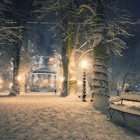 Winter fairytale by Ladislav Korenj - City,  Street & Park  City Parks ( winter, park, snow, croatia, zagreb )