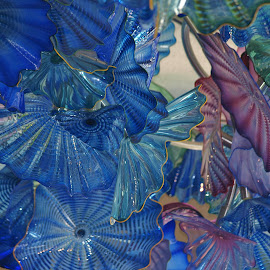 Blue and purple glass flowers by Jennifer Carnahan - Artistic Objects Glass ( glass ceiling sculpture by renowned artist dale chihuly at frederick meijer gardens,  )