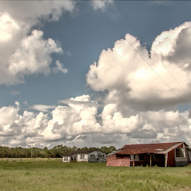 by Rob Whidden - Landscapes Prairies, Meadows & Fields