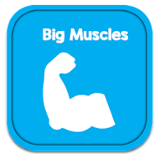 Tips To Get Big Muscles