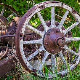 Wheel and Rear End by Dave Lipchen - Artistic Objects Other Objects ( wheel and rear end )