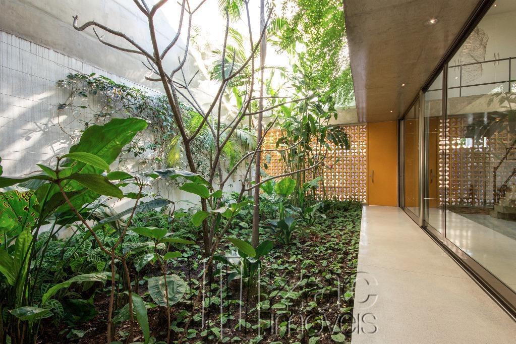 Oásis no Jardins! por Clara Reynaldo