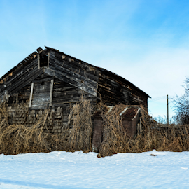 History Forgotten by Sylvia Meier - Buildings & Architecture Architectural Detail ( history, barn, beauty, forgotten, abandoned )