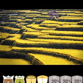 I Love Landscape Photography by Joe Takuy - Instagram & Mobile Instagram ( farm, landscape, photography, sumedang, sawah, fotografi, pemandangan )