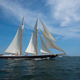 Schooner Columbia by Peter Miller - Transportation Boats