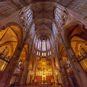 catedral de León by Roberto Gonzalo - Buildings & Architecture Places of Worship ( león, catedral )