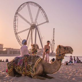 Happy Camels at the Beach by Adam dela Pedra - Landscapes Beaches ( camels, horizon, beach, landscape, people,  )