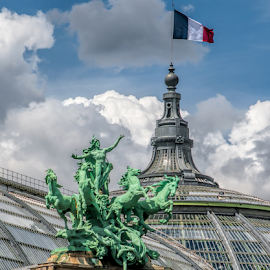 Paris by Vibeke Friis - Buildings & Architecture Other Exteriors ( paris, statue, flag, roofs, french,  )