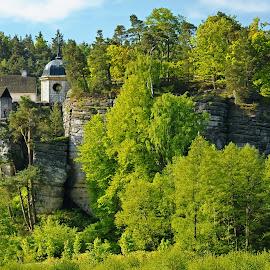 Rock castle  by Petr Germanič - Buildings & Architecture Public & Historical ( history, sloup, czech, castle )