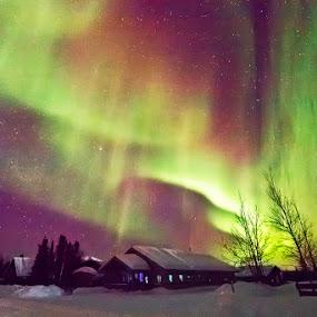 Aurora Borealis in Alaska (Compact Camera) by Justin Ng - Landscapes Starscapes ( northern lights, aurora borealis, alaska, justin ng )