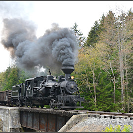 Heisler On Cheat river Cass  West Virginia by Will Zook - Transportation Trains