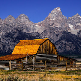 by Curtis Forrester - Buildings & Architecture Decaying & Abandoned ( wyoming, old barn, scenic, mountain(s), landscape, grand teton national park, united states of america, structures, old building(s) )