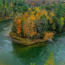 Site 7A by Donna Sparks - Landscapes Waterscapes ( michigan, color, fall, manistee, river )