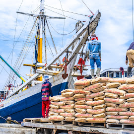 Ready for Shipment by Firdaus Sukmono - People Street & Candids ( candids, ship, candid, people, street photography )