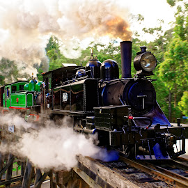 puffing billy  by RJ Photographics - Transportation Trains ( steam train puffing billy train bridge trestle bridge )