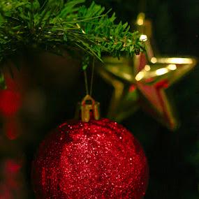 Silent Colors by Tigi Borg - Public Holidays Christmas ( holidays, lighthunters )