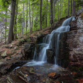 Bavarian waterfall by Radek Lauko - Landscapes Waterscapes ( forest, bayernwald, rocks, waterfall, water,  )