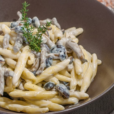 Pasta with Mushrooms, Cream and Herbs