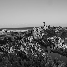 Waves and their watcher  by Michael Brooks - Landscapes Beaches ( black and white, waves, seascape, beach, rocks )