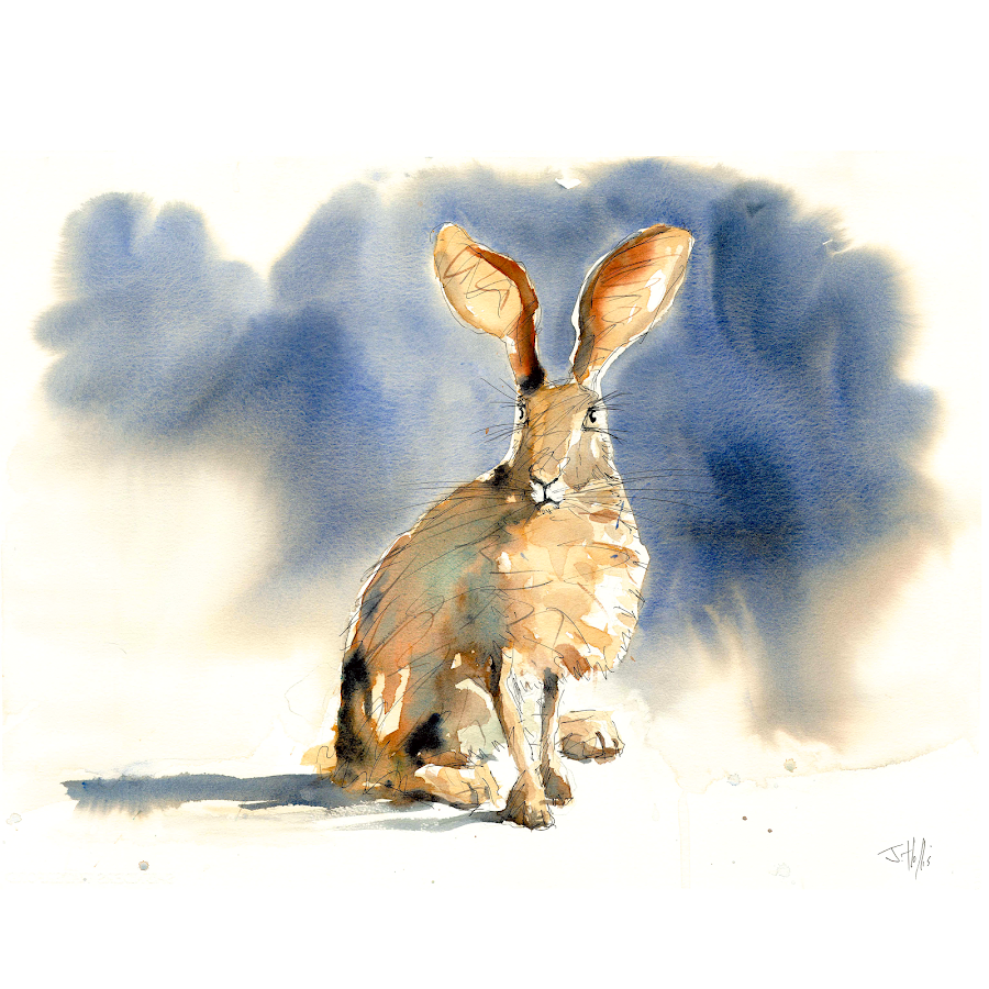 Animal art wildlife painting hare original watercolour