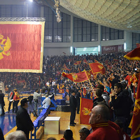 Montenegro Handball Arena by Aleksandar Šeter - Sports & Fitness Other Sports ( montenegro, flag, arena, woman, handball, supporters )