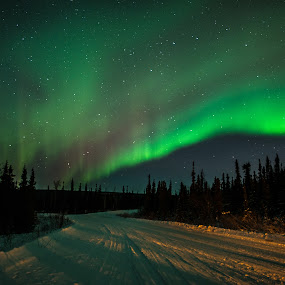 by Chris Bartell - Landscapes Starscapes ( winter, 2015, alaksa,  )
