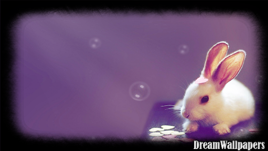Bunny Wallpaper - screenshot