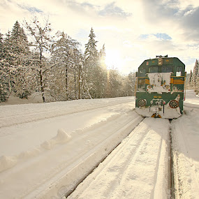 by Gregor Znidarsic - Transportation Trains ( winter, snow, train, sun )