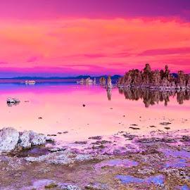 Tufa, Mono Lake. by Rafi SM - Landscapes Waterscapes ( reflection, nature, waterscape, mono lake, california, tufa, sierra )