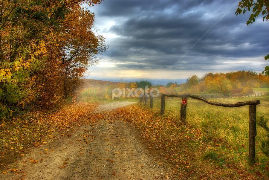 Country road by Boris Frković - Digital Art Places ( clouds, sky, autumn, colors, road, landscape, country )