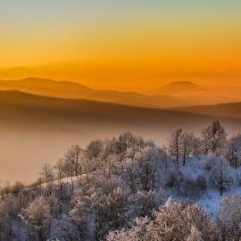 Winter landscape by Dumitru Doru - Landscapes Mountains & Hills ( mountain, winter, sunset, snow, trees, forest, sunrise, light )