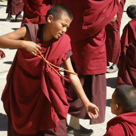 Tibetan monks depating by Gyan Fernando - People Street & Candids ( debating, monks, gyan fernando, tibetan monks, travel, tibet, sakya monastery )