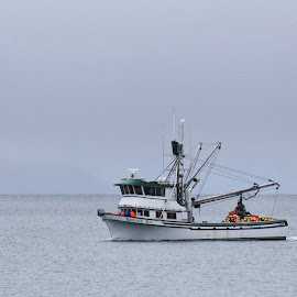 Fishing Boat In The Fog by Patricia Phillips - Transportation Boats ( alaska fishing boats homer )