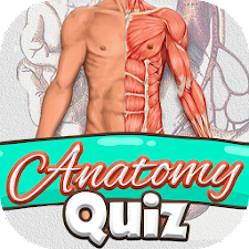 Anatomy Quiz Free Science Game