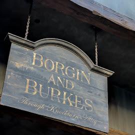 Borgin & Burkes Sign by Kathryn McConnell - City,  Street & Park  Amusement Parks ( sign, florida, theme park, orlando, universal studios, harry potter, tourism )