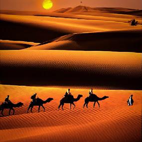 by Sambit Bandyopadhyay - Landscapes Deserts (  )