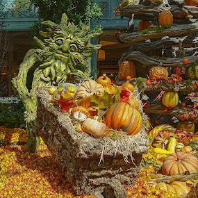 Halloween Bounty by Dee Haun - Artistic Objects Other Objects ( other objects, orange, garden display, green monster, 150914x5515ce2, pumpkins, chrysanthemums, artistic objects, halloween,  )